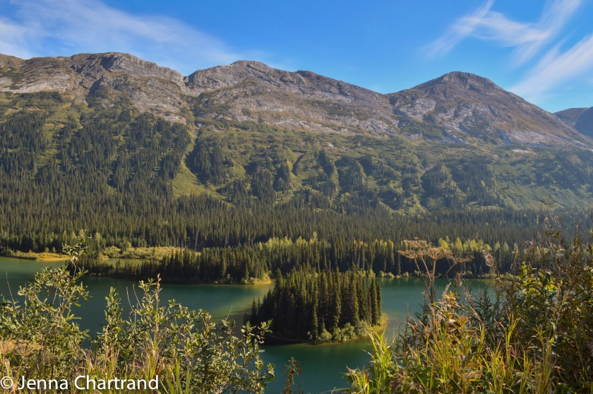 Never forget the beauty of our own backyard in Canada. The Pine Pass between Prince George and Fort St John, BC, Canada